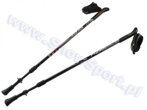 Kije Nordic Walking Fizan Speed Black Grey 2016 najtaniej